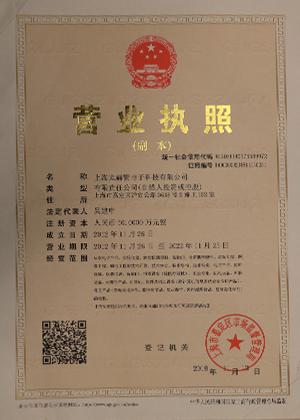 上海太赫紫电气科技有限公司